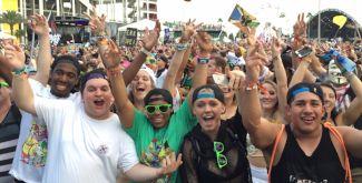 EDC 2015 crowd.jpg